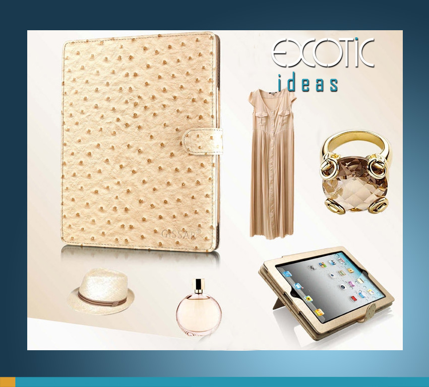 Gissar Fashion Ostrich Grain Textured Leather iPad 2, iPad 3 The new iPad, iPad 4 Case Cover, Auto Sleep/Awake-Champagne