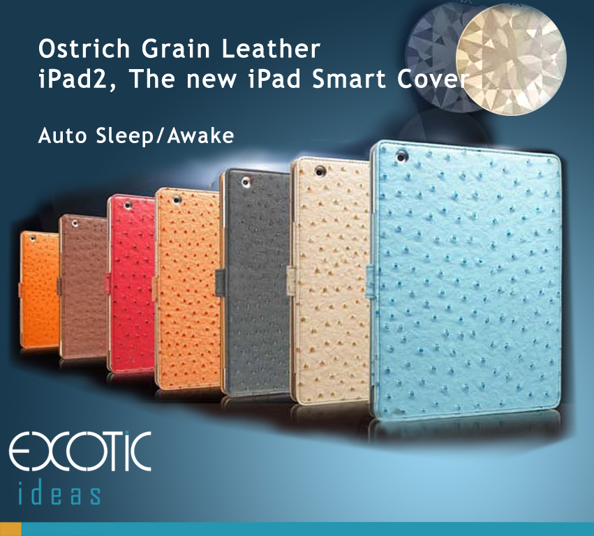 Gissar Fashion Ostrich Grain Textured Leather iPad 2, iPad 3 The new iPad, iPad 4 Case Cover, Auto Sleep/Awake