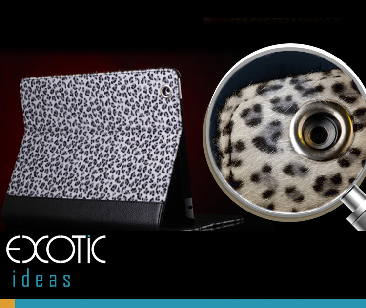 iPad 2, iPad 3, iPad 4, Skin Case Bag,  Fashionable Leopard Fur Design + Eco Friendly ABS Material Hard Case - Snow Leopard